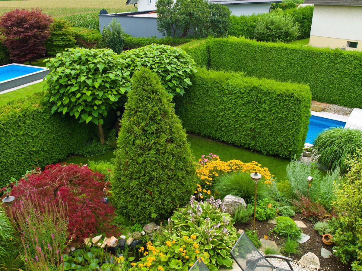 Sichtschutz Mit Hecken Kletterpflanzen Und Ziergrasern